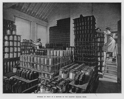 Storage of fruit in a section of the country packing room. Illustration for Orchards and Gardens Ancient and Modern, with a description of the Orchards, Gardens, Model Farms and Factories owned by Mr William Whiteley, of Westbourne Grove, London, by Alfred Barnard (London, 1895).