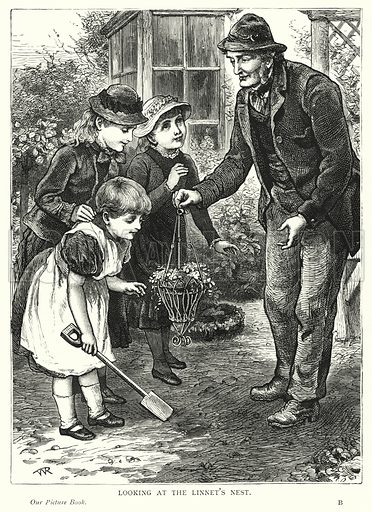 Looking at the linnet's nest. Illustration for Our Picture Book (S W Partridge, c 1870).