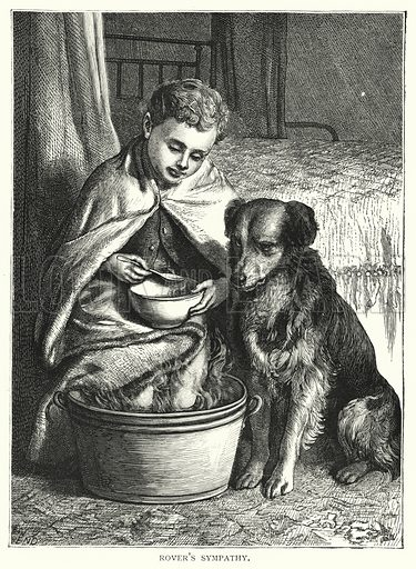 Rover's sympathy. Illustration for Our Picture Book (S W Partridge, c 1870).