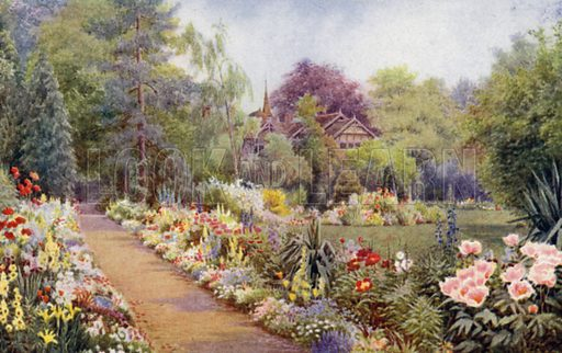 Herbaceous Border with Bulbs in May. Illustration for Hardy Perennials and Herbaceous Borders by Walter P Wright (Swarthmore, 1912).