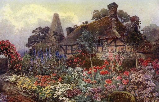 Poppies, Delphiniums, etc, in a Farmhouse Border