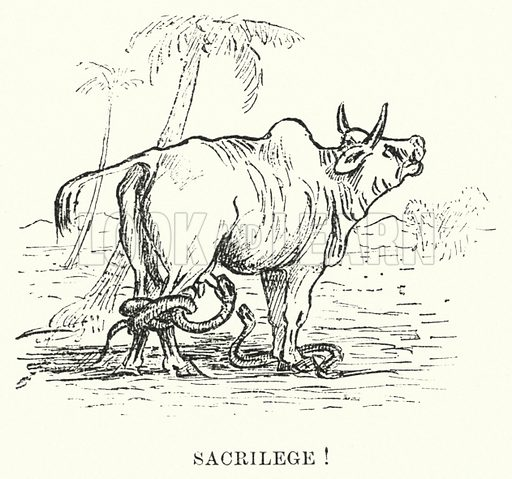 Sacrilege! Illustration for Picturesque India, A Handbook for European Travellers (George Routledge, 1898). Illustrations drawn by John Pedder (1850-1929), H Sheppard Dale (1852-1921), and H H Stanton (fl 1880-1905).