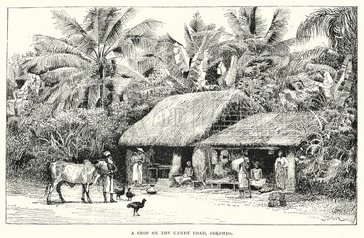 A Shop on the Kandy Road, Colombo. Illustration for Picturesque India, A Handbook for European Travellers (George Routledge, 1898).  Illustrations drawn by John Pedder (1850-1929), H Sheppard Dale (1852-1921), and H H Stanton (fl 1880-1905).