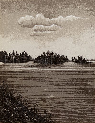 Sister Island. Illustration for Tugby's Illustrated Guide to Niagara Falls (1889).