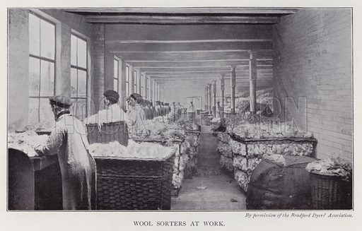 Wool sorters at work. Illustration for The Practical Retail Draper, A Complete Guide for the Drapery and Allied Trades, by Fred W Burgess (Virtue, c 1912).