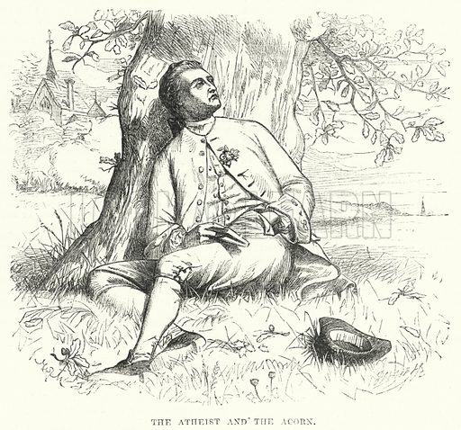 The Atheist and the Acorn. Illustration for The British Workman, 1 July 1867.
