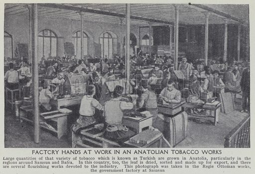 Factory hands at work in an Anatolian tobacco works. Illustration for Harmsworth's Business Encyclopedia and Commercial Educator (c 1926).