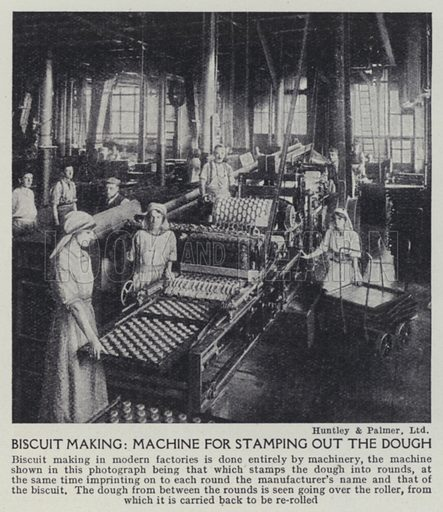 Biscuit making, Machine for stamping out the dough. Illustration for Harmsworth's Business Encyclopedia and Commercial Educator (c 1926).