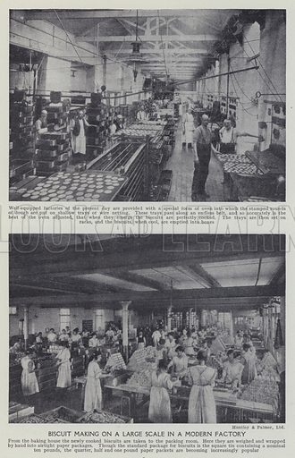 Biscuit making on a large scale in a modern factory. Illustration for Harmsworth's Business Encyclopedia and Commercial Educator (c 1926).