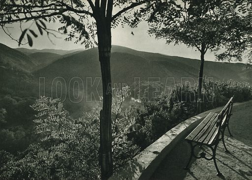 Yesil Yalova, Surroundings of the Green Yalova. Illustration for Fotografla Turkiye [ie Turkey in Pictures] published by The General Direction of The Press, Ankara, c 1930.  Photographs provided by Orthmar Pferschy (1898-1984).  It is not clear whether or not all the photos are by Pferschy, or whether or not the copyright was acquired by the State.  Gravure printed.