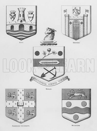 Athy; Swansea; Morley; Cambridge University; Maidstone. Illustration for The Book of Public Arms, A Cyclopaedia, by Arthur Charles Fox-Davies and M E B Crookes (Jack, 1894).