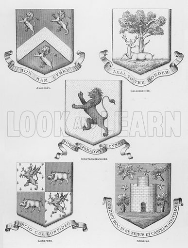 Anglesey; Selkirkshire; Montgomeryshire; Longford; Stirling. Illustration for The Book of Public Arms, A Cyclopaedia, by Arthur Charles Fox-Davies and M E B Crookes (Jack, 1894).