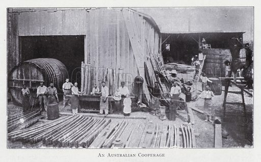 An Australian cooperage. Illustration for The Raw Materials of Commerce by J Henry Vanstone (Pitman, 1929).