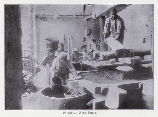 Primitive wine press. Illustration for The Raw Materials of Commerce by J Henry Vanstone (Pitman, 1929).