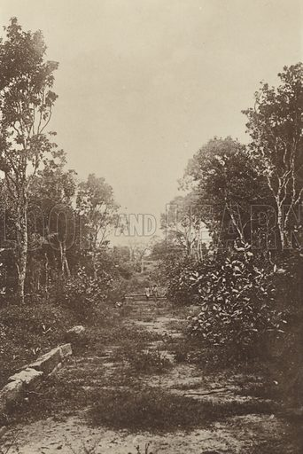 Remains of an Ancient Street. Illustration for The Ruined Cities of Ceylon by Henry W Cave, illustrated with photographs taken by the author in 1896, (3rd edn, Hutchinson, 1904).  Gravure printed.