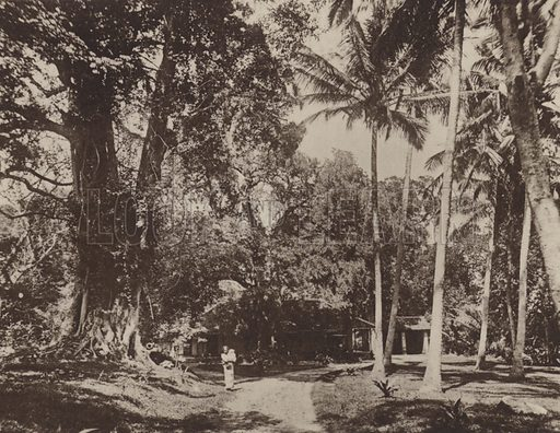 Rest-House at Nalanda. Illustration for The Ruined Cities of Ceylon by Henry W Cave, illustrated with photographs taken by the author in 1896, (3rd edn, Hutchinson, 1904).  Gravure printed.