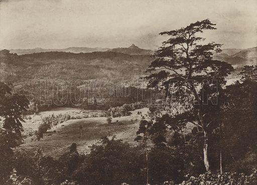 Scenery of the Kandyan District. Illustration for The Ruined Cities of Ceylon by Henry W Cave, illustrated with photographs taken by the author in 1896, (3rd edn, Hutchinson, 1904).  Gravure printed.