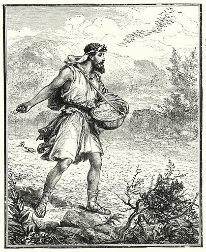 The Sower. Illustration for Scripture Picture-Book (SPCK, c 1890).