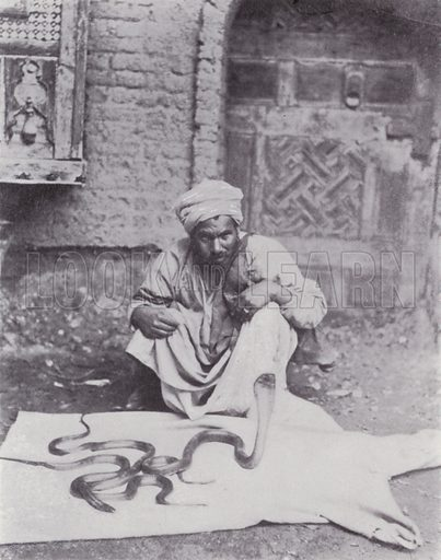 Snake Charmer in the Streets of Cairo. Illustration for Souvenir of Egypt (George Ch Dovas, 1898).