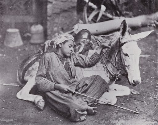 Boy resting on his Donkey. Illustration for Souvenir of Egypt (George Ch Dovas, 1898).