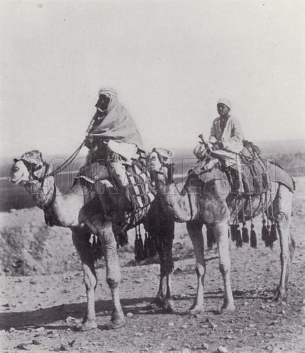 Bedouins crossing the Desert. Illustration for Souvenir of Egypt (George Ch Dovas, 1898).