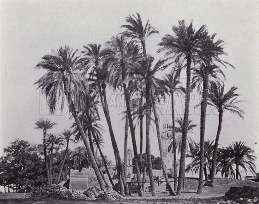 Arabian Village on the Banks of the Nile. Illustration for Souvenir of Egypt (George Ch Dovas, 1898).