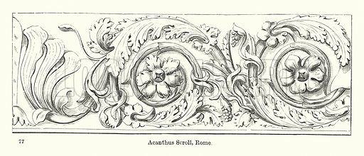 Acanthus Scroll, Rome. Illustration for The Characteristics of Styles, An Introduction to the Study of the History of Ornamental Art, by Ralph N Wornum (8th edn, Chapman and Hall, 1893).