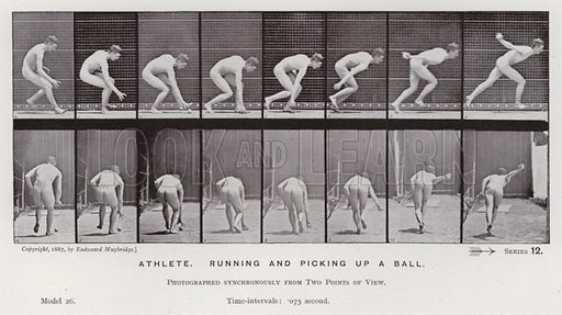 Athlete, running and picking up a ball. Illustration for The Human Figure in Motion, An Electro-Photographic Investigation of Consecutive Phases of Muscular Actions by Eadweard Muybridge (6th edn, Chapman and Hall, nd).
