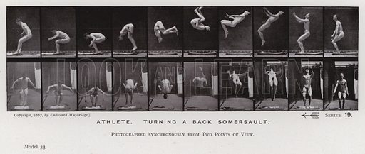 Athlete, turning a back somersault. Illustration for The Human Figure in Motion, An Electro-Photographic Investigation of Consecutive Phases of Muscular Actions by Eadweard Muybridge (6th edn, Chapman and Hall, nd).