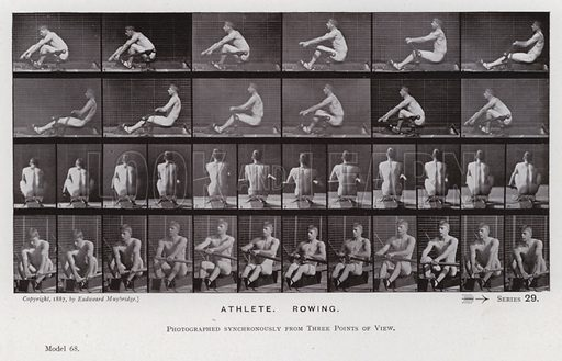 Athlete, Rowing. Illustration for The Human Figure in Motion, An Electro-Photographic Investigation of Consecutive Phases of Muscular Actions by Eadweard Muybridge (6th edn, Chapman and Hall, nd).