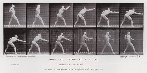 Pugilist, striking a blow. Illustration for The Human Figure in Motion, An Electro-Photographic Investigation of Consecutive Phases of Muscular Actions by Eadweard Muybridge (6th edn, Chapman and Hall, nd).