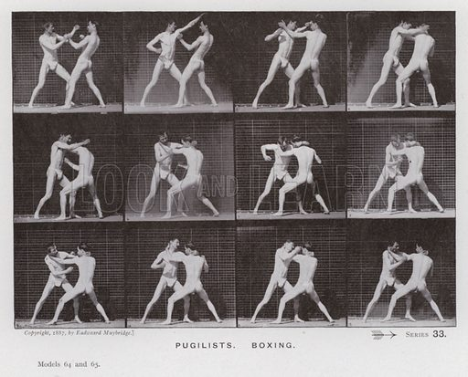 Pugilists, Boxing. Illustration for The Human Figure in Motion, An Electro-Photographic Investigation of Consecutive Phases of Muscular Actions by Eadweard Muybridge (6th edn, Chapman and Hall, nd).