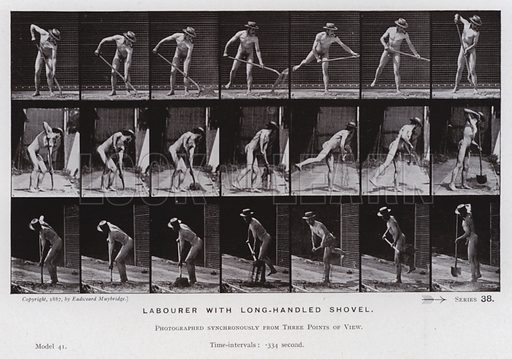 Labourer with long-handled shovel. Illustration for The Human Figure in Motion, An Electro-Photographic Investigation of Consecutive Phases of Muscular Actions by Eadweard Muybridge (6th edn, Chapman and Hall, nd).