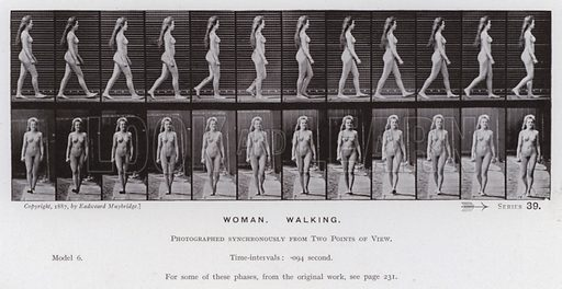 Woman, Walking. Illustration for The Human Figure in Motion, An Electro-Photographic Investigation of Consecutive Phases of Muscular Actions by Eadweard Muybridge (6th edn, Chapman and Hall, nd).