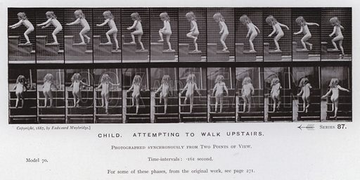 Child, attempting to walk upstairs. Illustration for The Human Figure in Motion, An Electro-Photographic Investigation of Consecutive Phases of Muscular Actions by Eadweard Muybridge (6th edn, Chapman and Hall, nd).