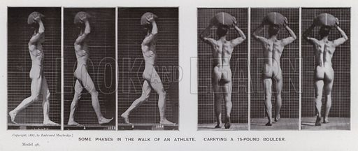 Some phases in the walk of an athlete, carrying a 75-pound boulder. Illustration for The Human Figure in Motion, An Electro-Photographic Investigation of Consecutive Phases of Muscular Actions by Eadweard Muybridge (6th edn, Chapman and Hall, nd).