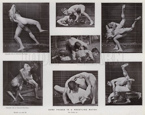 Some phases in a wrestling match. Illustration for The Human Figure in Motion, An Electro-Photographic Investigation of Consecutive Phases of Muscular Actions by Eadweard Muybridge (6th edn, Chapman and Hall, nd).