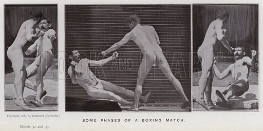 Some phases of a boxing match. Illustration for The Human Figure in Motion, An Electro-Photographic Investigation of Consecutive Phases of Muscular Actions by Eadweard Muybridge (6th edn, Chapman and Hall, nd).