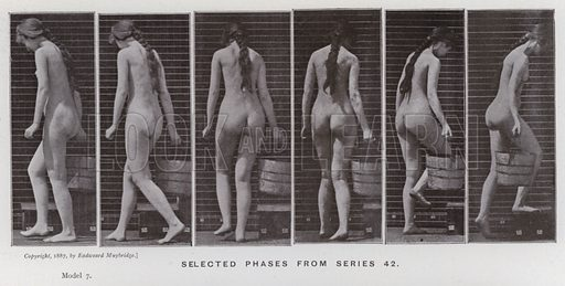 Selected phases from series 42. Illustration for The Human Figure in Motion, An Electro-Photographic Investigation of Consecutive Phases of Muscular Actions by Eadweard Muybridge (6th edn, Chapman and Hall, nd).