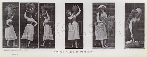 Various phases of movement. Illustration for The Human Figure in Motion, An Electro-Photographic Investigation of Consecutive Phases of Muscular Actions by Eadweard Muybridge (6th edn, Chapman and Hall, nd).