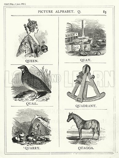 Picture Alphabet, Q. Illustration for The Infant's Magazine (1867).