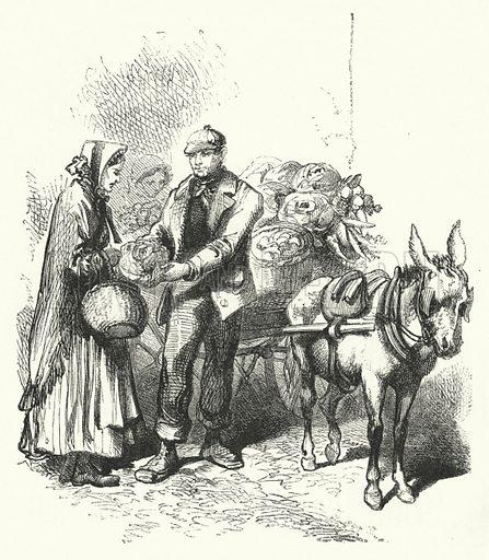 Costermonger. Illustration for The Infant's Magazine (1868).