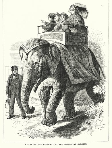 A Ride on the Elephant at the Zoological Gardens. Illustration for The Infant's Magazine (1871).