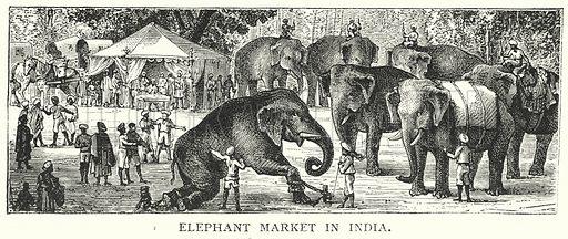Elephant Market in India. Illustration for The Infant's Magazine (1884).