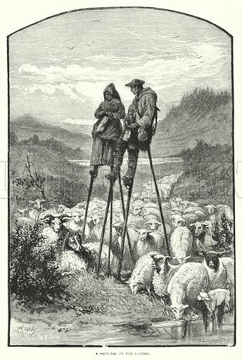 A Pastoral in the Landes. Illustration for The Leisure Hour (1891).