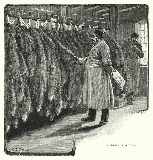 A Buyer's Inspection. Illustration for The Leisure Hour (1894).