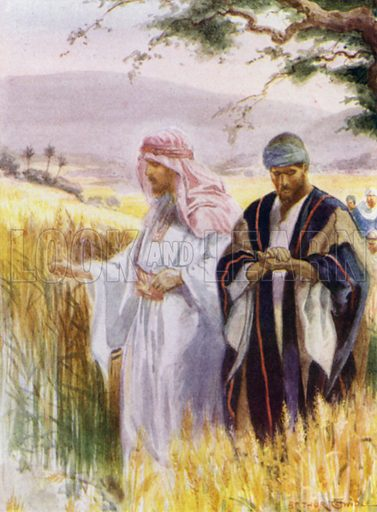 Jesus and his disciples in the corn field. Illustration for The Little Bible, An Anthology (Oxford, 1935).