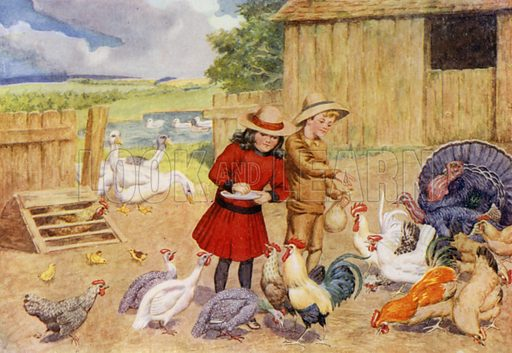"The poultry yard. Illustration for A Nursery Book of Science by ""The Cockiolly Bird"" (T Nelson, c 1920)."