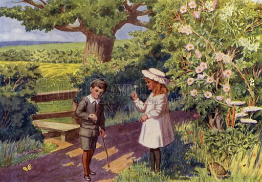 "A lane in June. Illustration for A Nursery Book of Science by ""The Cockiolly Bird"" (T Nelson, c 1920)."