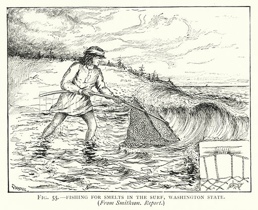 Fishing for smelts in the surf, Washington State. Illustration for The Origins of Invention, A Study of Industry among Primitive Peoples, by Otis T Mason (Walter Scott, 1895).